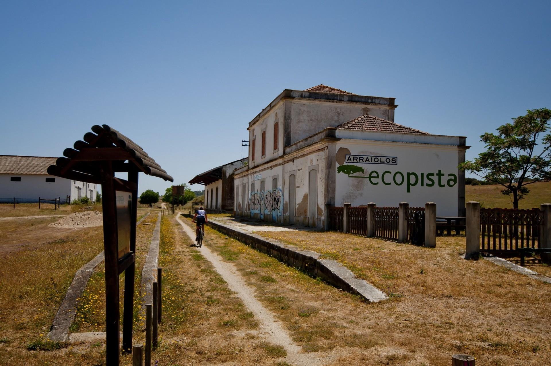Mais de 3000 quilómetros cicláveis em homologação no Alentejo e Ribatejo